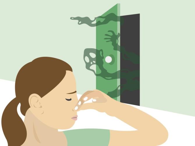 Qu podemos hacer cuando salen malos olores de la casa - Malos olores en casa ...